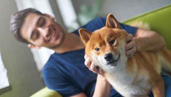 toiletteur-canin-profil